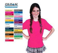 Gildan Cotton Youth T-Shirt, Colour